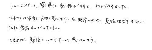 freil-sankasyanokoe10.jpg